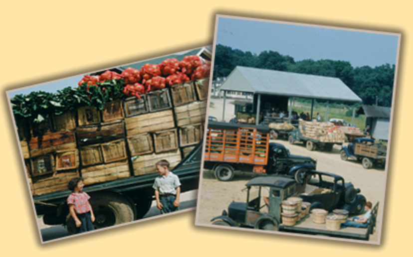 1953 Expansion & Distribution