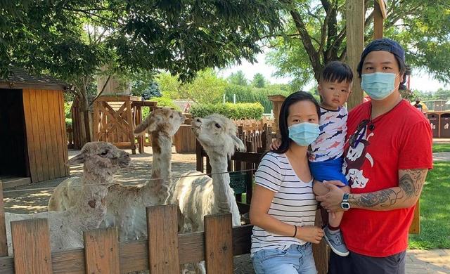 family-animal